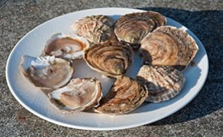 Les huîtres d'Annick Prod'Homme