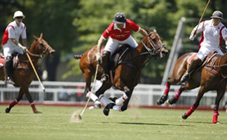 Argentine Polo Open Championship in Palermo