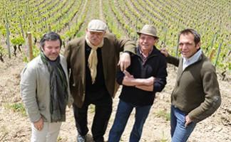 The Roanne coast vineyard