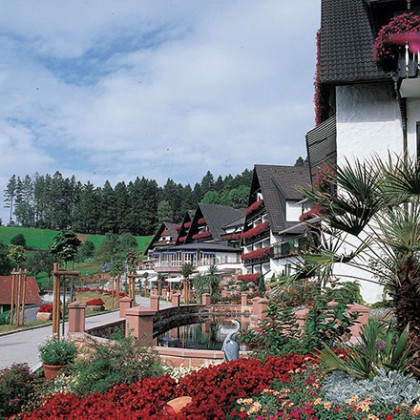 Hotel dollenberg h tel de luxe bad peterstal - Hotel en foret noire avec piscine ...
