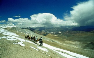 A horseback ride in the Andes