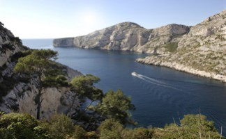 Hire a boat to discover the calanques