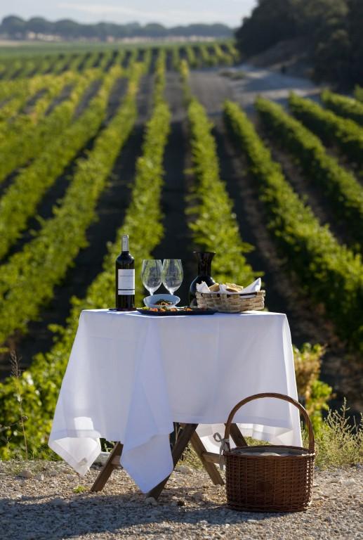 abadia-retuerta-ledomaine-viñedos