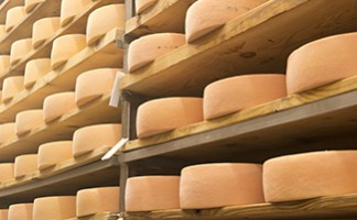 Cheese from the Eastern Townships
